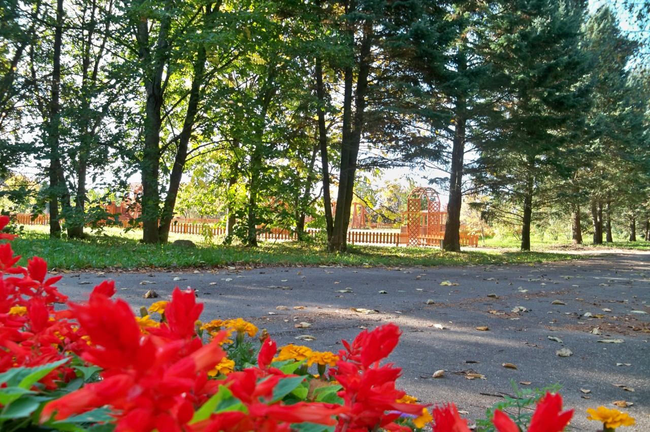 Дендрологический сад